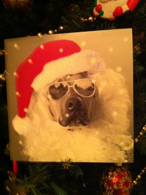 The coolest Santa around!©AGC, LLC