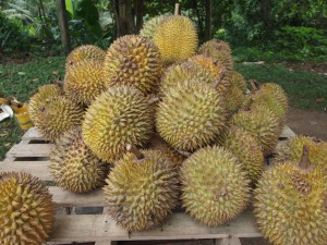 Great! Smelly exotic fruit